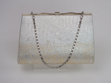 Silver Brocade Evening Bag