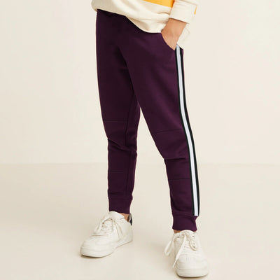 PNB Dark Purple Side Striped Boy's Trouser ( 2 YEARS TO 8 YEARS )