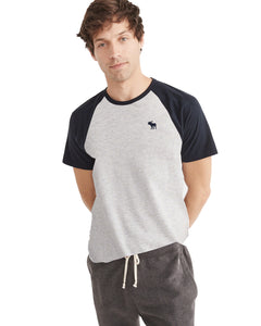 Abercrombie & Fitch Light Grey and Navy Crew Neck T-Shirt - Deeds.pk