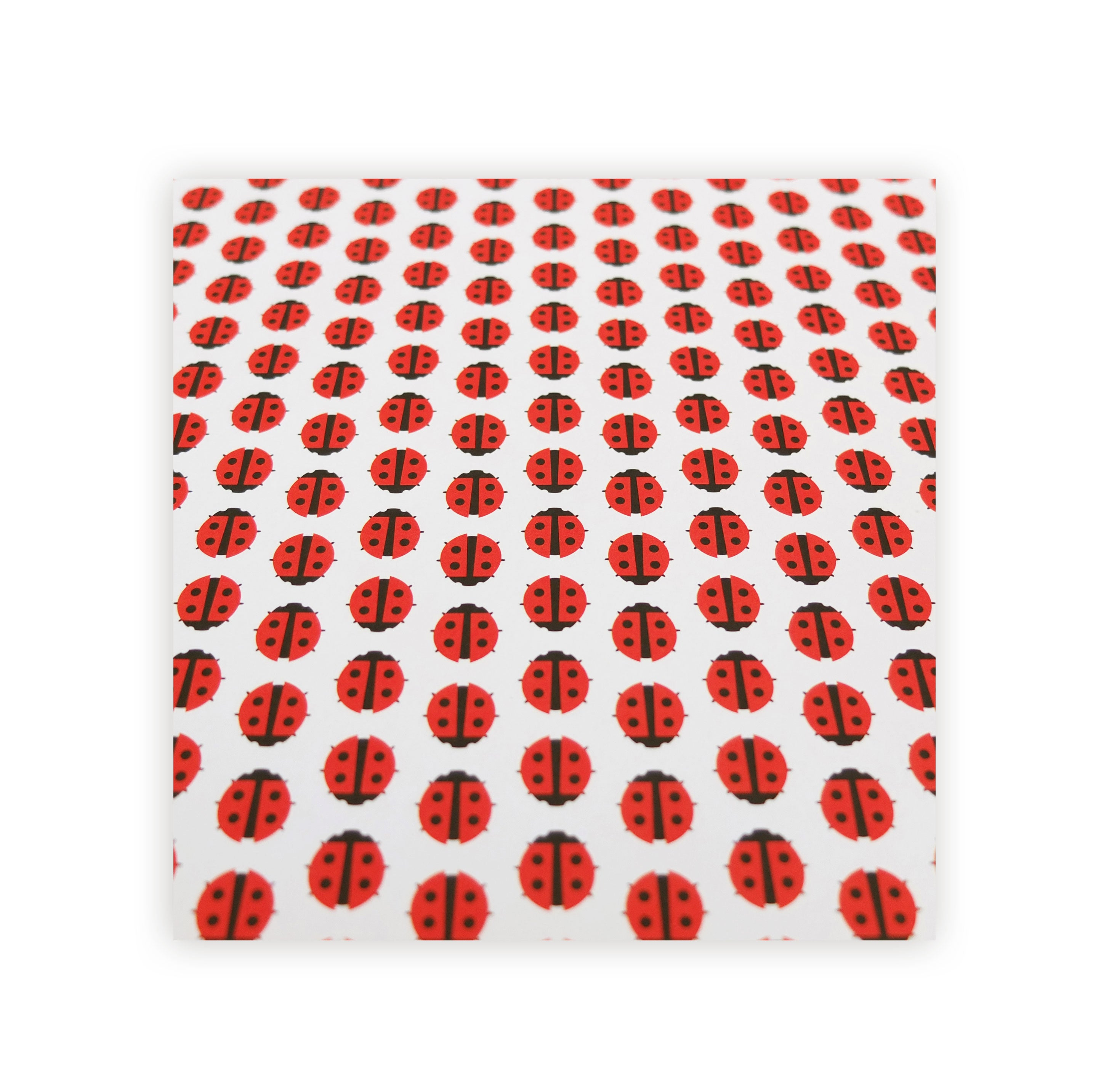 Ladybird Wrapping Paper