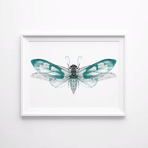 Hand Printed Insect Screen Print - Butterfly / Dragonfly Design A3 - HOWKAPOW