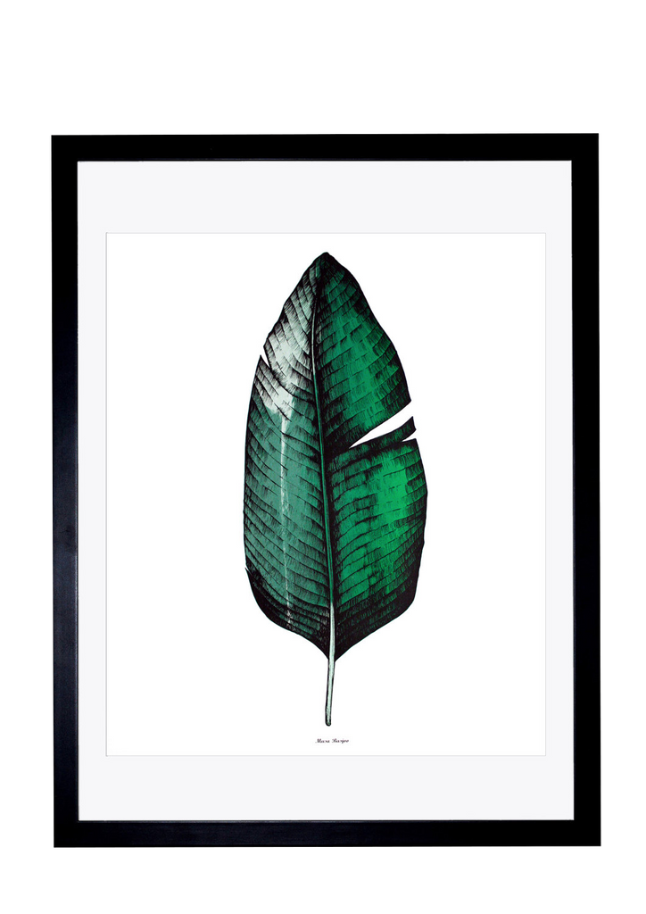 Banana Leaf Screen Print A1 size