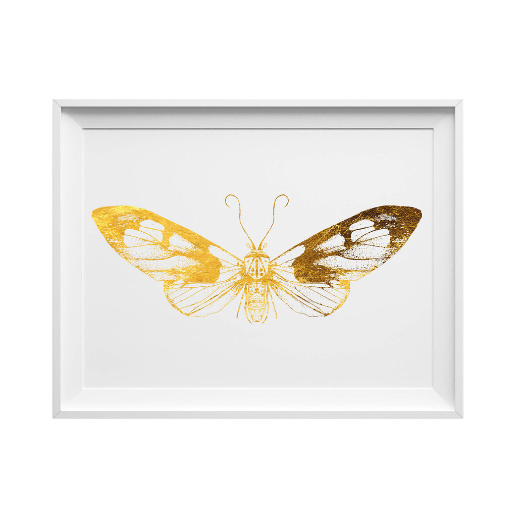 Hand Printed Gold Foil Moth Screen Print - Butterfly / Insect Design A3 - HOWKAPOW