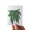 Spider Plant Mini Card - HOWKAPOW