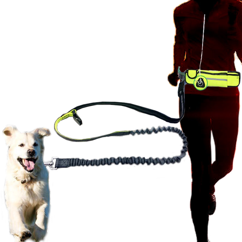 ... Runner Friendly Dog Leash With Storage