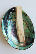 Abalone Shell, fully polished, stunning
