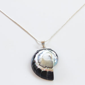 Ocean Luxe:Midnight Black Nautilus Pendant Necklace