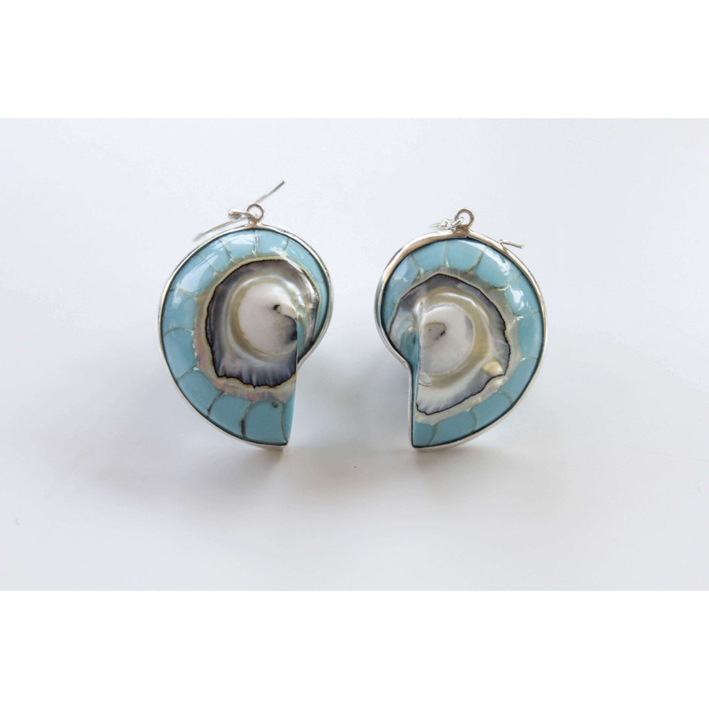 Ocean Luxe:Blue Nautilus Shell Earrings