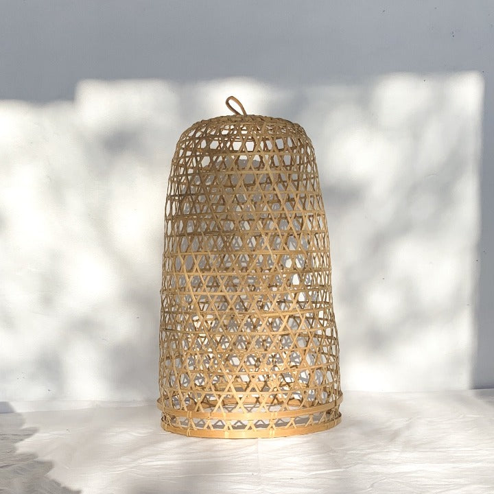 The Darwin Pendant Light - Ocean Luxe