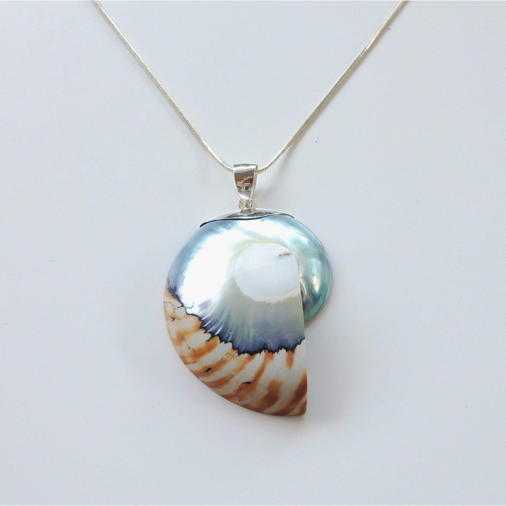 "Ocean Luxe:Natural ""Tiger"" Nautilus Pendant Necklace"