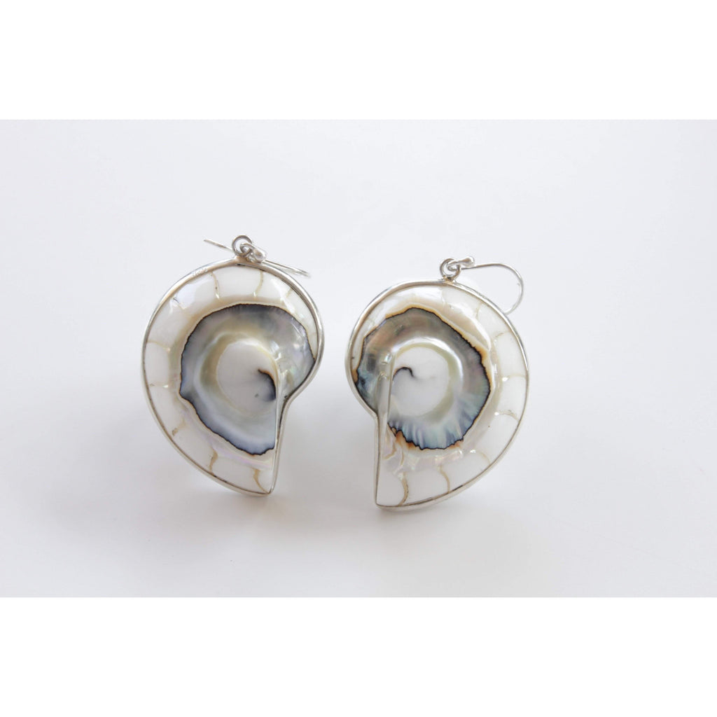 Ocean Luxe:White Nautilus Shell Earrings