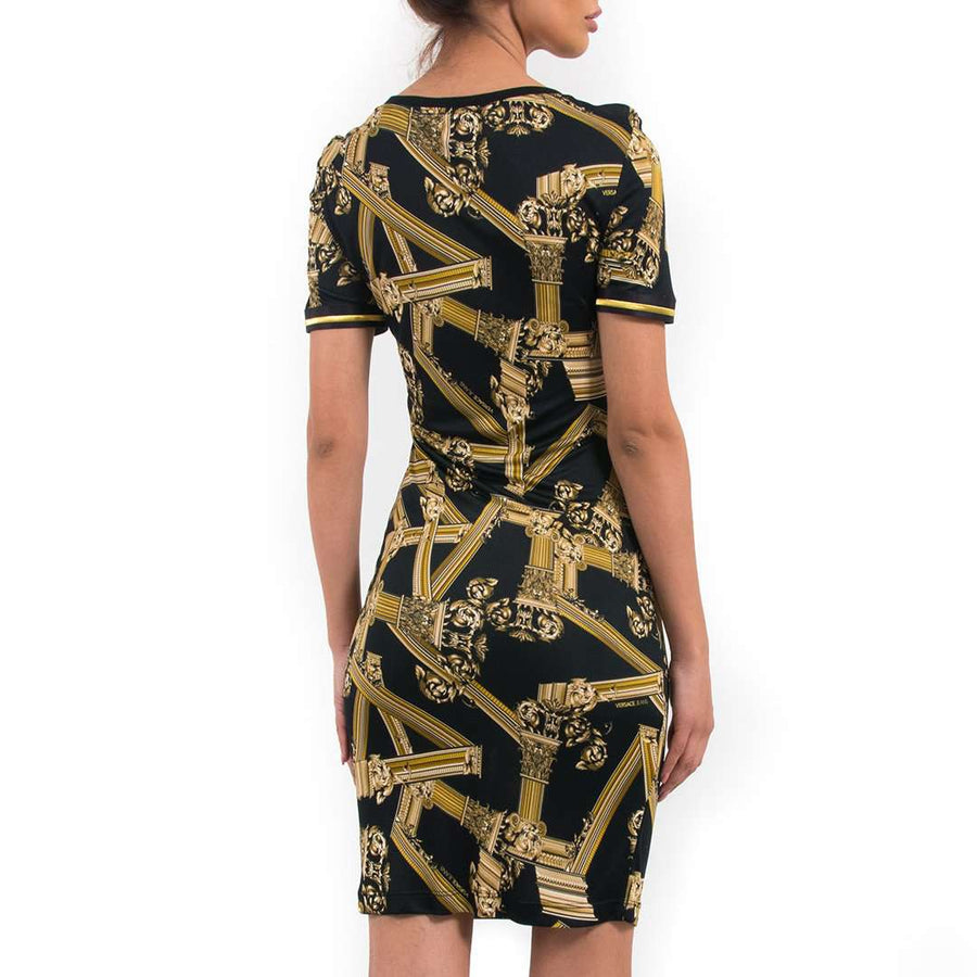 Pillar Print Stretch Dress