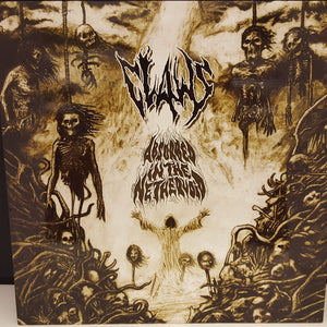 Claws - Absorbed In The Nethervoid - 2009 - Vinyl - Metal