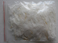 "1/4 oz Ivory 1-3"" Turkey Marabou Loose Feathers 50-70 Pieces"