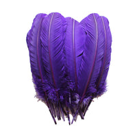 Turkey Feathers, Purple Turkey Round Quill Feathers 10-12 inches 20 Pieces