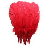Turkey Feathers, Red Turkey Round Quill Feathers 10-12 inches 20 Pieces