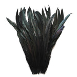"25pcs 12-14"" Black Bleach-Dyed Rooster Coque Tail Feathers"