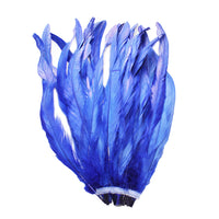 "25pcs 10-12"" Royal Blue Bleach-Dyed Rooster Coque Tail Feathers"
