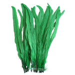 "25pcs 14-16"" Emerald Bleach-Dyed Rooster Coque Tail Feathers"