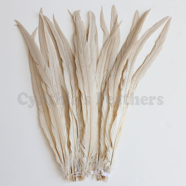 "25pcs 16-18"" Champagne Bleach-Dyed Rooster Coque Tail Feathers"