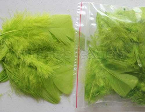 "0.35 oz Lime Green 3-4"" Turkey Plumage Loose Feathers 80-120 Pieces"