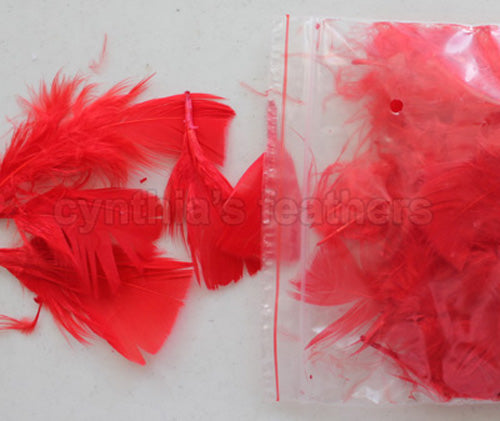"0.35 oz Red  3-4"" Turkey Plumage Loose Feathers 80-120 Pieces"