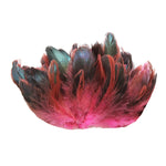 "20 Grams (0.7 oz) 4-6"" Half Bronze Hot Pink Schlappen Coque Rooster Tail Feathers, ~200 pcs"