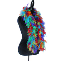45 Grams Rainbow Mix Chandelle Feather Boa
