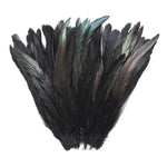 "16 Grams (0.6 ozs) 8-10"" Half Bronze Black Schlappen Coque Rooster Tail Feathers, ~80 pcs"