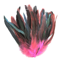 "16 Grams (0.6 ozs) 8-10"" Half Bronze Hot Pink Schlappen Coque Rooster Tail Feathers, ~80 pcs"