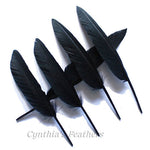 Duck Feathers Black Duck Primary Wing Pointer Feathers 7-10 inches 10 pieces SKU: 7J12