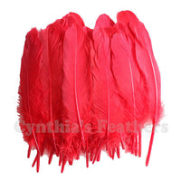Turkey Feathers, Red Turkey Round Quill Feathers 6-8 inches 50 Pieces SKU: 6A11
