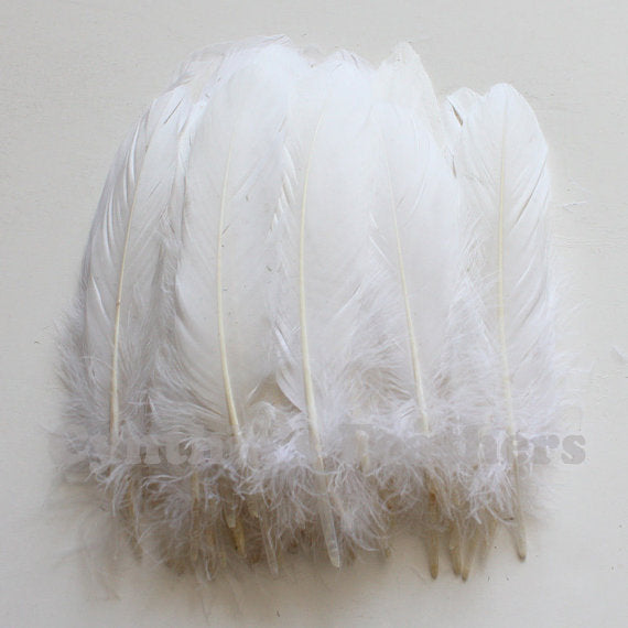 Turkey Feathers, White Turkey Round Quill Feathers 6-8 inches 50 Pieces SKU: 6A11