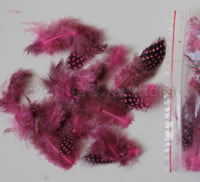 "12g (0.42oz) Hot Pink 1~4"" Guinea Hen Plumage Feathers"