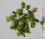 "12g (0.42oz) Lime Green 1~4"" Guinea Hen Plumage Feathers"