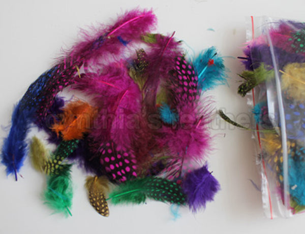 "12g (0.42oz) Mix of 14 Colors 1~4"" Guinea Hen Plumage Feathers For Sale"