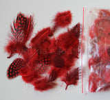 "12g (0.42oz) Red 1~4"" Guinea Hen Plumage Feathers"