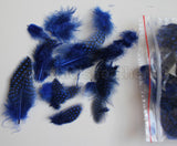 "12g (0.42oz) Royal Blue 1~4"" Guinea Hen Plumage Feathers"