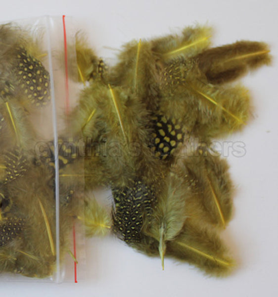 "12g (0.42oz) Yellow 1~4"" Guinea Hen Plumage Feathers"