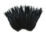 "5-7"" Black Rooster Saddle Feathers for Crafting, Headpiece,  ~9g, 0.32Oz"