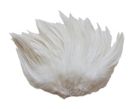 "5-7"" Ivory Rooster Saddle Feathers for Crafting, Headpiece,  ~9g, 0.32Oz"