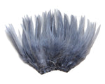 "5-7"" Silver Gray Rooster Saddle Feathers for Crafting, Headpiece,  ~9g, 0.32Oz"