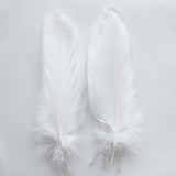 Goose Feathers, White Goose Satinettes Feathers Crafting Wedding Decoration Halloween Costume SKU: 7I13