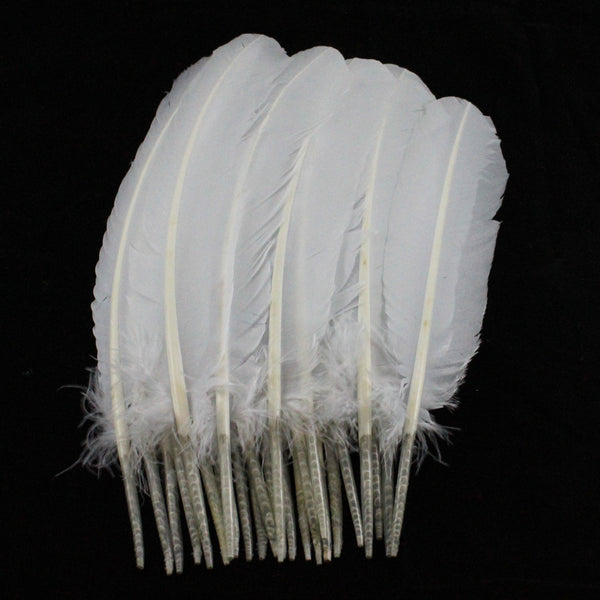 Turkey Feathers, White Turkey Round Quill Feathers 10-12 inches 20 Pieces