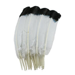 Turkey Feathers, White with Black tips Turkey Round Quill Feathers 10-12 inches 20 Pieces