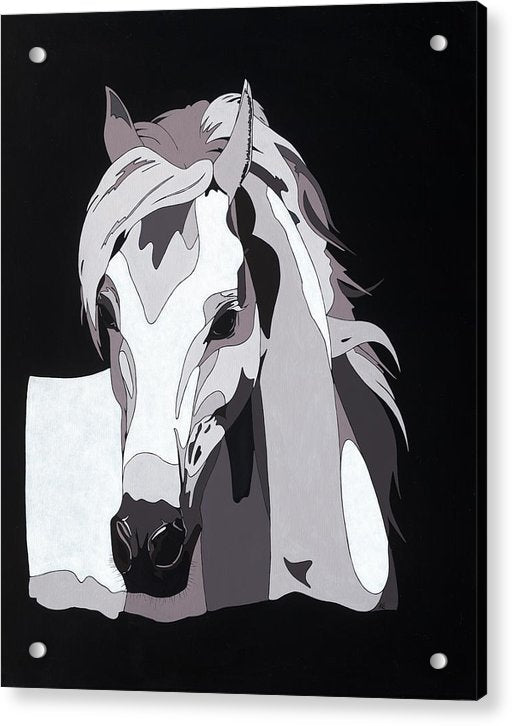 Arabian Horse With Hidden Picture - Acrylic Print