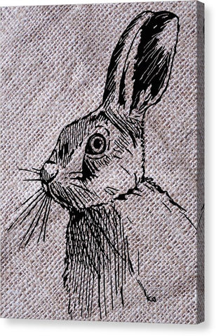Hare On Burlap - Canvas Print