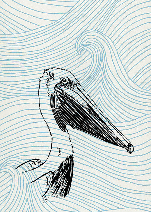 Pelican On Waves - Art Print