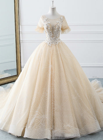 Fairy Tale Champagne Ball Gown Tulle Short Sleeve Backless Wedding Dress