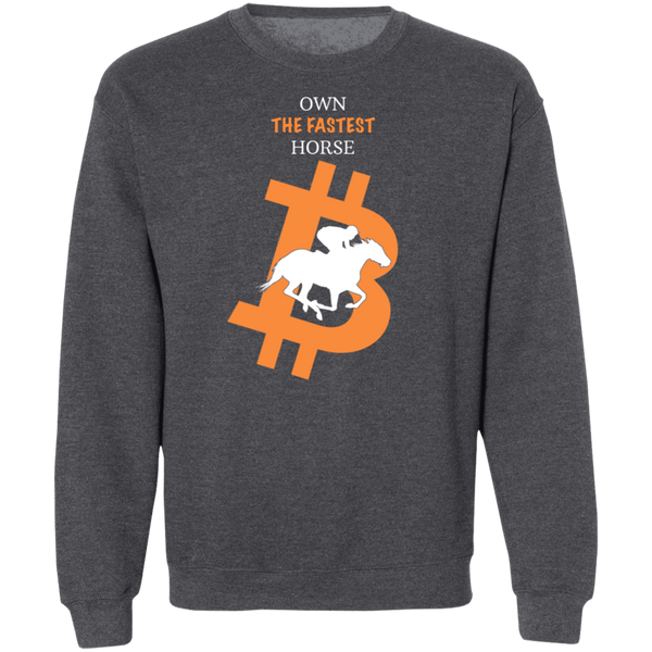Bitcoin Sweatshirt Dark Heather / S Own The Fastest Horse Sweatshirt